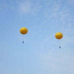 2個黄色玉